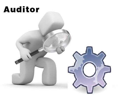 نقش حسابرسان در بررسی سیستم ها