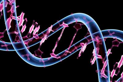 موضوعات پایان نامه ژنتیک