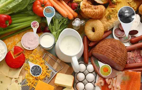 پایان نامه بهداشت و كنترل كيفی مواد غذايی